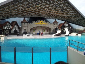 Dolphin show stage